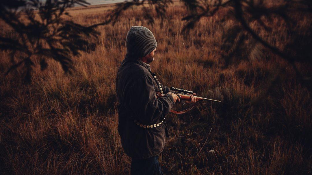 Observer les animaux durant la chasse, quelles astuces ?
